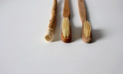 Brosse à dent bambou : Pourquoi oublier sa brosse à dent en plastique pour passer au bambou