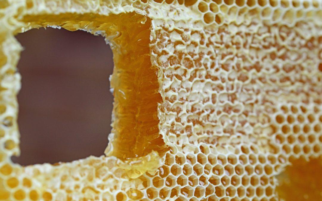 Cire d abeille : 10 façons d'utiliser la cire d'abeille