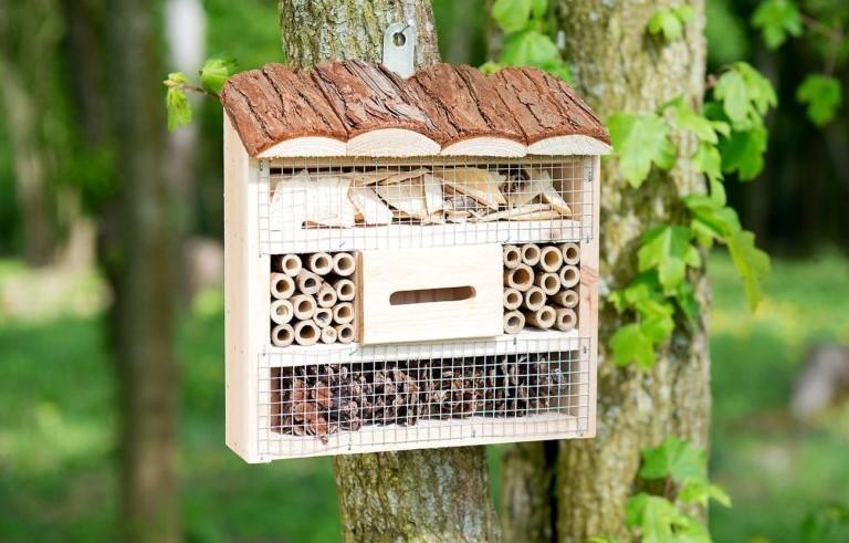 Installer un refuge miniature dans votre jardin pour favoriser la biodiversité