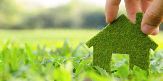Trois gestes écologiques simples à adopter quotidiennement à la maison